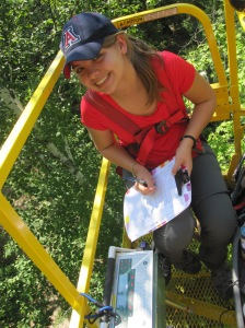 REU student Jean Wilkening taking A/Ci measurements of leaves in the canopy.